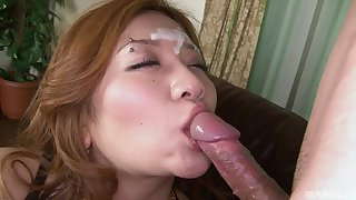 Japanese wife Takaki Hijiriryo loves to spread her legs while giving a BJ